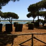 Mantenimiento Jardines Huelva